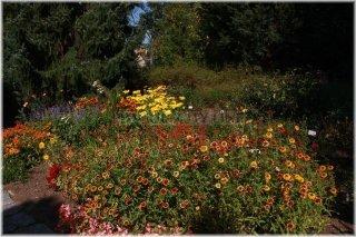 botanicka-zahrada-troja110927_004