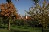 petrin-seminarska-zahrada101010_012
