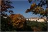 petrin-strahovska-zahrada002