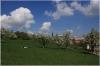 petrin_seminarska-zahrada110416_003