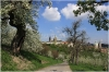 petrin_seminarska-zahrada110416_019