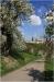 petrin_seminarska-zahrada110416_018