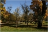 Kinský Garden (Kinského zahrada)