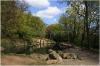 Kinský Garden (Kinského zahrada) - pond(small lake) with a statue of a seal