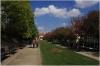 Petřín – Jiřinkový (Dahlia) Park