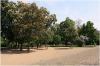 Rieger Gardens(czech: Riegrovy sady)