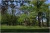 Chotek Gardens (czech: Chotkovy sady)