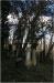 The Old Jewish Cemetery in Smíchov