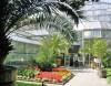 Botanická zahrada015
