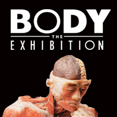 2017 Body The Exhibition